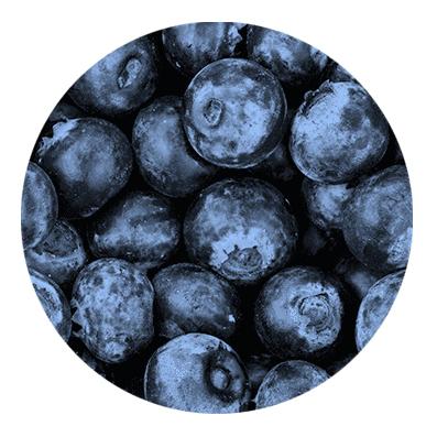 【Wild Blueberry】(30ml) SIMPLY VAPOUR画像