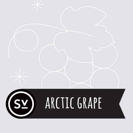 【Arctic Grape】(60ml) SIMPLY VAPOURの画像