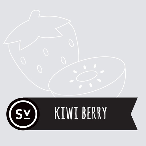 【Kiwi Berry】(60ml) SIMPLY VAPOURの画像