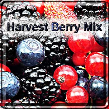 【Harvest】(15ml) The Vapor Girlの画像