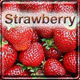 【Strawberry】(15ml) The Vapor Girlの画像