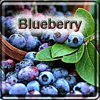 【Blueberry】(15ml) The Vapor Girlの画像
