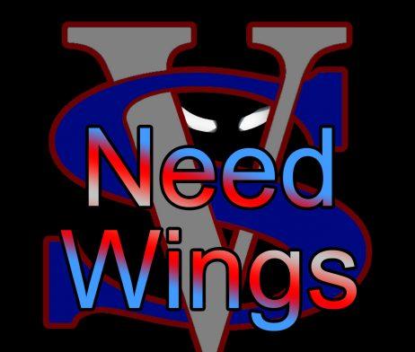 【Need Wings】(30ml)VAPOR SOULの画像